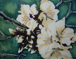 "Almond Blossom. Acrylic. ""Unsold""."