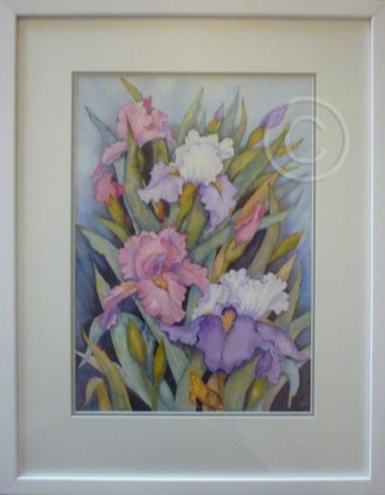 "Flag Iris. Watercolour. ""Unsold""."
