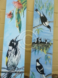 Local-magpies