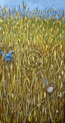 "Wrens. Acrylic. ""Unsold""."