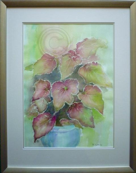 Begonia Rex framed watercolour 55 cm X 70 cm