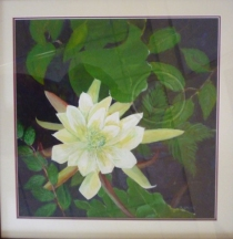 Desert Orchid framed acrylic 70 cm x 70 cm