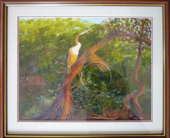 Drying my wings Kakadu framed acrylic 60 cm x 50 cm