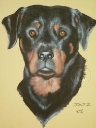 Jazz acrylic stretch canvas 35 x 45 cm commission