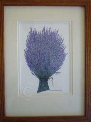 Lavender watercolour 230 mm x 300 mm