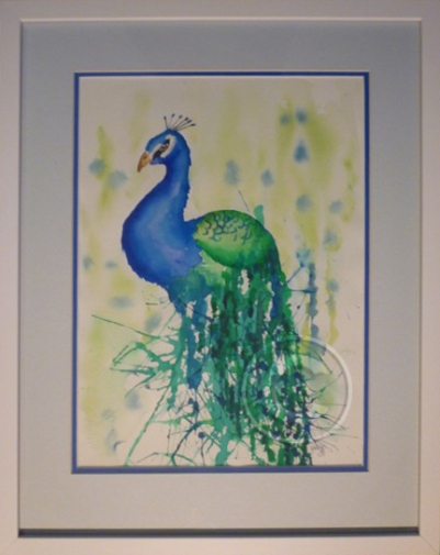 Proud as a Peacock framed watercolour 42 x 53 cm available