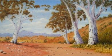 "Flinders Ranges Scene 2 Acrylic, SC, 80 x 40 cms ""$300.00"""