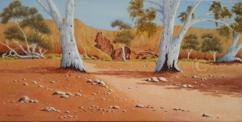 "Flinders Ranges Scene 3 Oil, SC, 80 x 40 cms ""$300.00"""