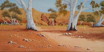 "Flinders Ranges Scene 3 Oil, SC, 80 x 40 cms ""$300.00"""