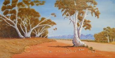 """Near Alice Springs Acrylic, SC, 80 x 40 cms """"$300.00"""""""