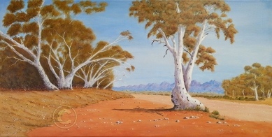 "Near Alice Springs Acrylic, SC, 80 x 40 cms ""$300.00"""