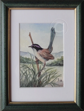 Purple Crowned Fairy Wren 'Watercolour' 160 x 210, Framed 'Unsold'